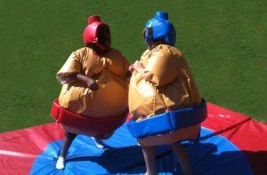 location de combat de sumo